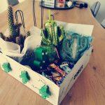 Cactus cadeau meester