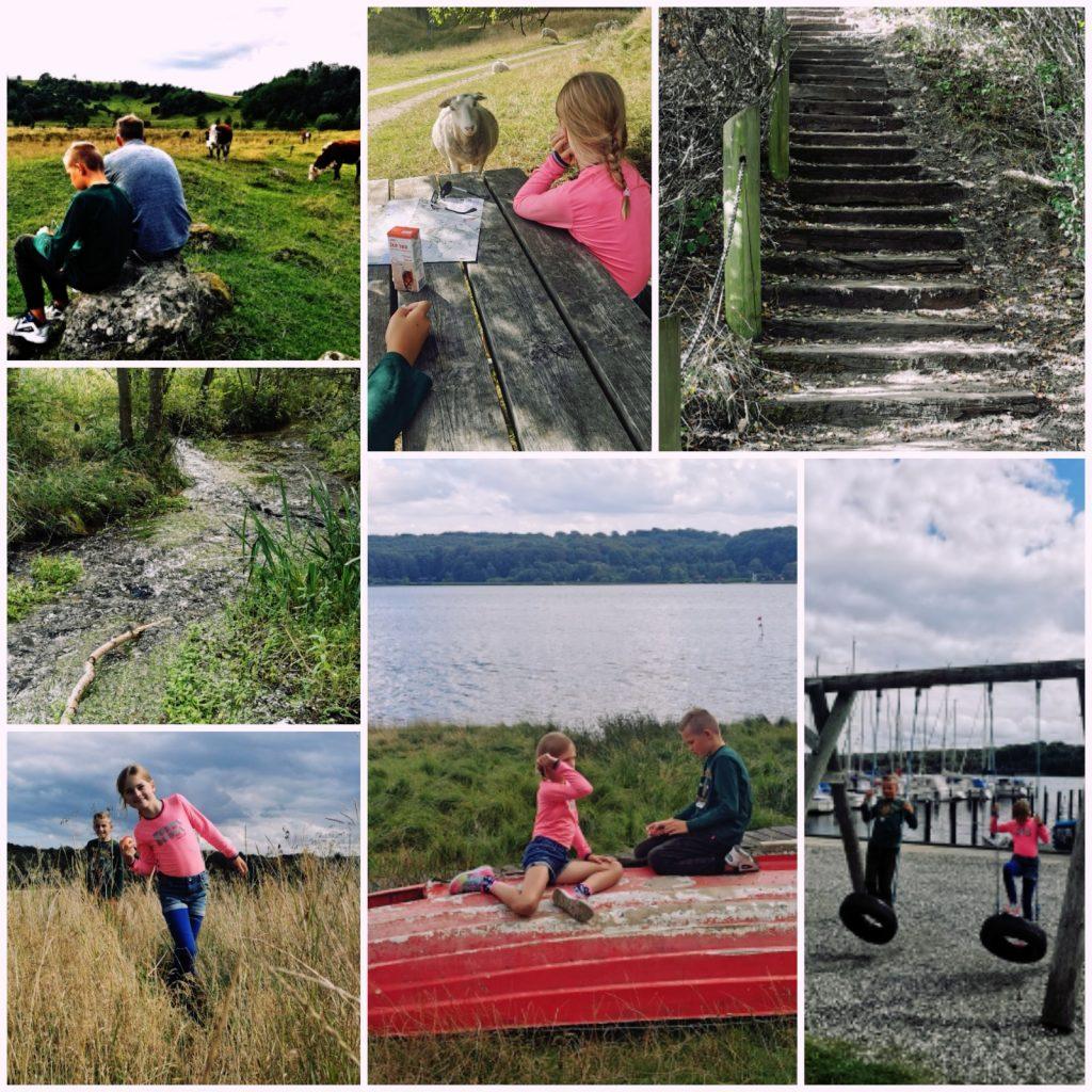 Mariagerfjord 1024x1024 - Zomervakantie in Denemarken